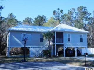 298 Crane Drive, Pawleys Island, SC 29585 (MLS #1707073) :: James W. Smith Real Estate Co.