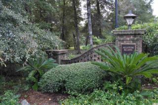 121 Susannah Lane, Pawleys Island, SC 29585 (MLS #1707124) :: James W. Smith Real Estate Co.
