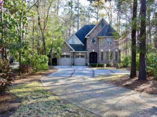 362 Golden Bear Drive, Pawleys Island, SC 29585 (MLS #1707249) :: James W. Smith Real Estate Co.