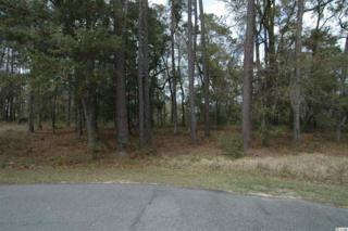 Lot L Litchfield Plantation, Pawleys Island, SC 29585 (MLS #1707275) :: James W. Smith Real Estate Co.