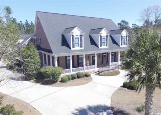 495 Preservation Circle, Pawleys Island, SC 29585 (MLS #1707286) :: James W. Smith Real Estate Co.