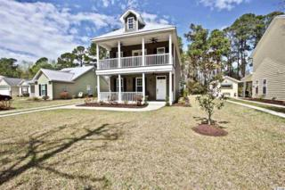 44 Clearwater Drive, Pawleys Island, SC 29585 (MLS #1707313) :: James W. Smith Real Estate Co.