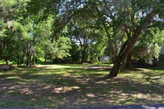 52 Cayman Loop, Pawleys Island, SC 29585 (MLS #1708526) :: James W. Smith Real Estate Co.