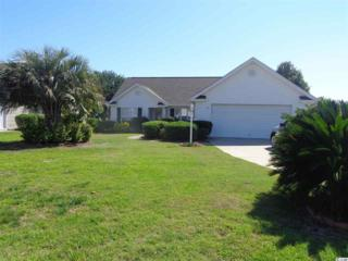 1767 Starbridge Dr, Surfside Beach, SC 29575 (MLS #1711298) :: The HOMES and VALOR TEAM