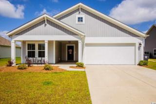 917 Sewing Bee Place, Little River, SC 29566 (MLS #1711329) :: The Hoffman Group