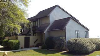 153 Finch Drive #284, Georgetown, SC 29440 (MLS #1711592) :: The Litchfield Company