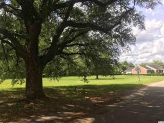 00 Grimes St, Georgetown, SC 29440 (MLS #1711651) :: The Litchfield Company