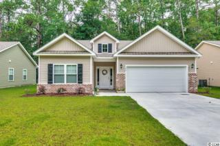 188 Clearwater Drive, Pawleys Island, SC 29585 (MLS #1711693) :: James W. Smith Real Estate Co.