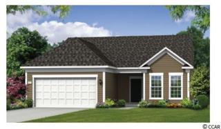 1238 Prescott Circle, Myrtle Beach, SC 29577 (MLS #1711751) :: The Litchfield Company