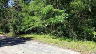 902 Yale Place, Pawleys Island, SC 29585 (MLS #1711781) :: James W. Smith Real Estate Co.