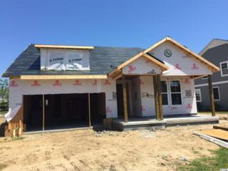 Lot 14 Champions Village Drive, Murrells Inlet, SC 29576 (MLS #1707731) :: The Litchfield Company