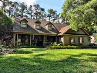 376 Congressional Dr, Pawleys Island, SC 29585 (MLS #1709524) :: James W. Smith Real Estate Co.
