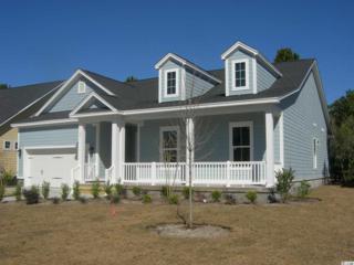 Lot 1 Winston Circle, Pawleys Island, SC 29585 (MLS #1616307) :: The Litchfield Company