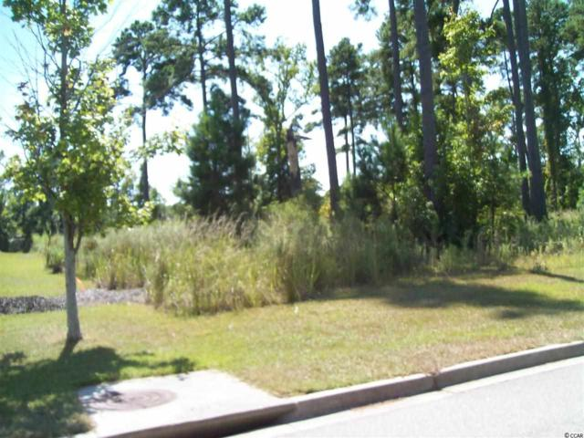 1356 Dividend Loop, Myrtle Beach, SC 29577 (MLS #1316662) :: The Litchfield Company