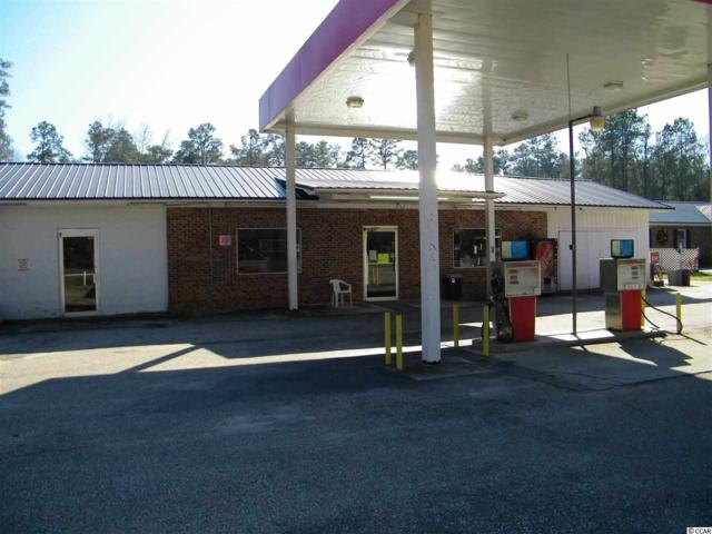 12291 Andrew Jackson Hwy., Fair Bluff, NC 28439 (MLS #1501460) :: The HOMES and VALOR TEAM