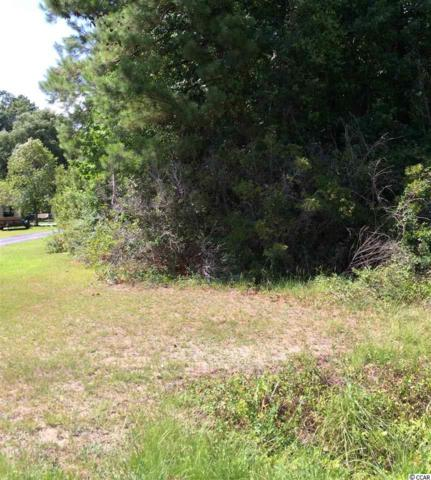 TBD Forestbrook Rd., Myrtle Beach, SC 29588 (MLS #1513913) :: The Hoffman Group