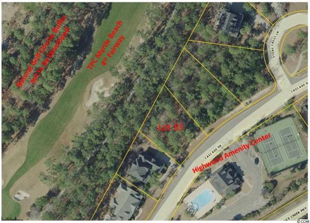 Lot 85 Cascade Drive, Murrells Inlet, SC 29576 (MLS #1702754) :: Myrtle Beach Rental Connections