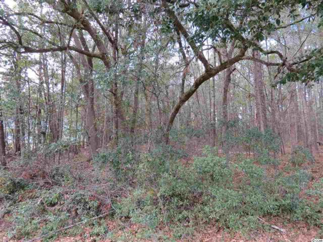 Lot 23 Robin Drive, Georgetown, SC 29440 (MLS #1702919) :: The Litchfield Company