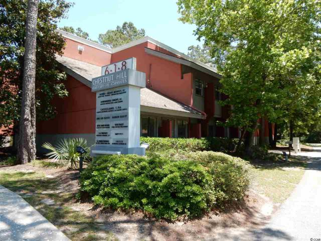 618 Chestnut Rd., Myrtle Beach, SC 29572 (MLS #1703468) :: The Litchfield Company