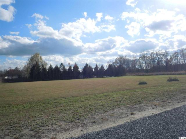 19 Taylor Ln., Clarendon, NC 28432 (MLS #1706648) :: SC Beach Real Estate
