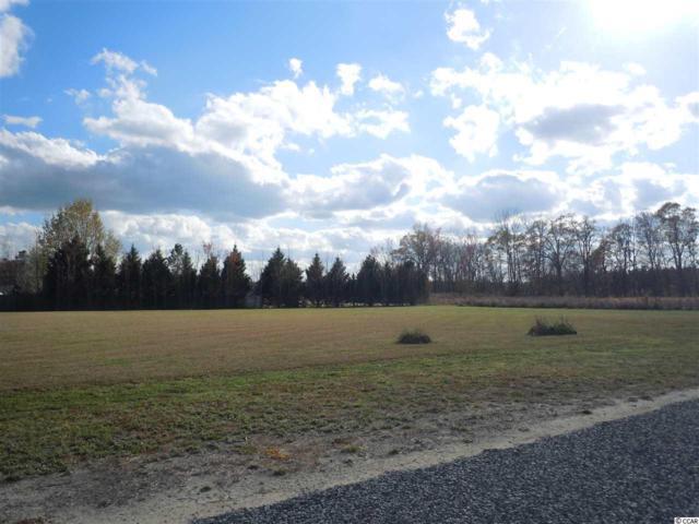 20 Taylor Ln., Clarendon, NC 28432 (MLS #1706653) :: SC Beach Real Estate