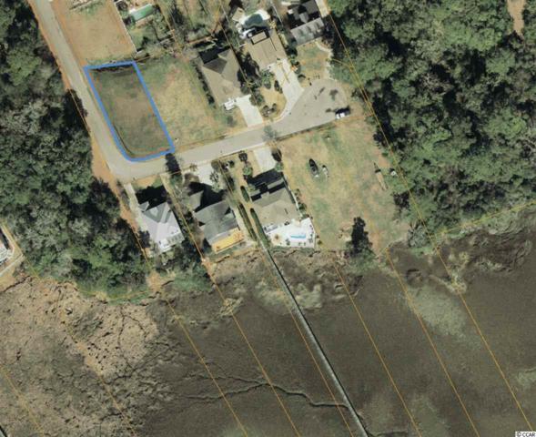 1509 Salt Marsh Trl, Little River, SC 29566 (MLS #1707245) :: Sloan Realty Group