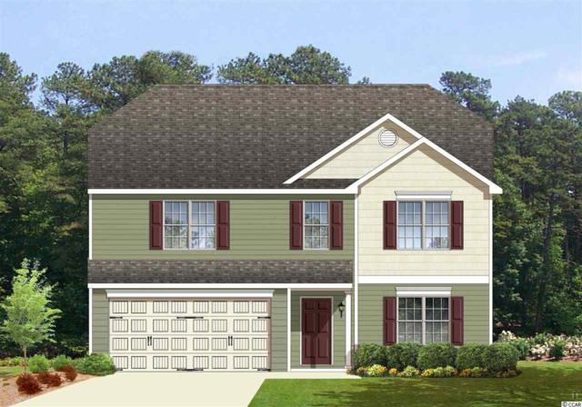 174 Bendick Ct., Little River, SC 29566 (MLS #1709775) :: The Litchfield Company