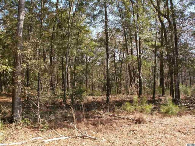 Lot 7 Shadow Moss Ln., Murrells Inlet, SC 29576 (MLS #1711979) :: Jerry Pinkas Real Estate Experts, Inc