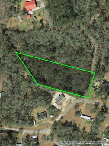 NE Jungle Road, Conway, SC 29526 (MLS #1713792) :: The HOMES and VALOR TEAM