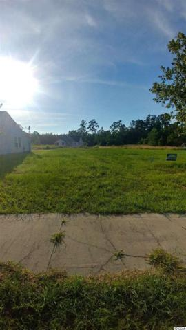 115 Murphy Way, Conway, SC 29526 (MLS #1714737) :: Myrtle Beach Rental Connections