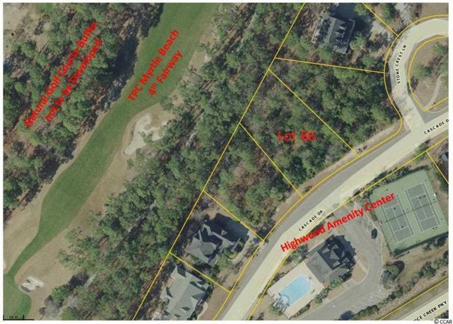 Lot 86 Cascade Drive, Murrells Inlet, SC 29576 (MLS #1716278) :: Myrtle Beach Rental Connections