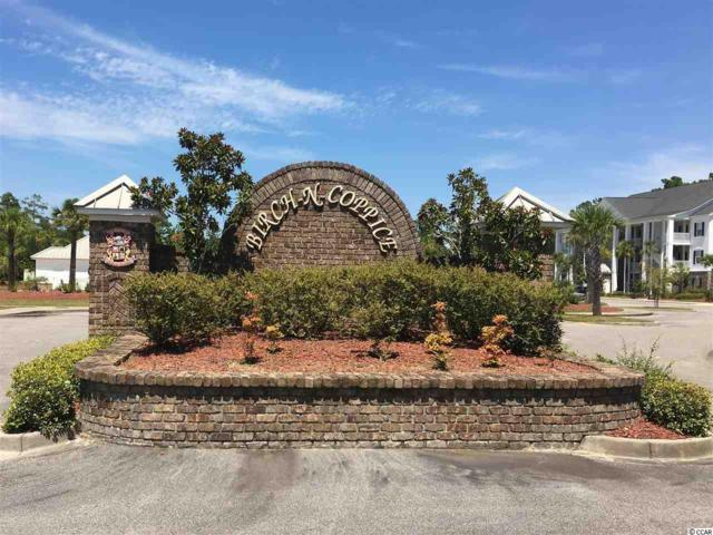 118 Birch N Coppice Dr. #1, Surfside Beach, SC 29575 (MLS #1716946) :: The Litchfield Company
