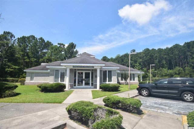 9250 Highway 17 Bypass, Murrells Inlet, SC 29576 (MLS #1717046) :: The Litchfield Company