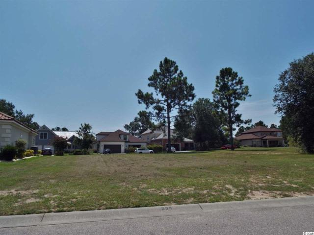 917 Bluffview Drive, Myrtle Beach, SC 29579 (MLS #1717752) :: Sloan Realty Group