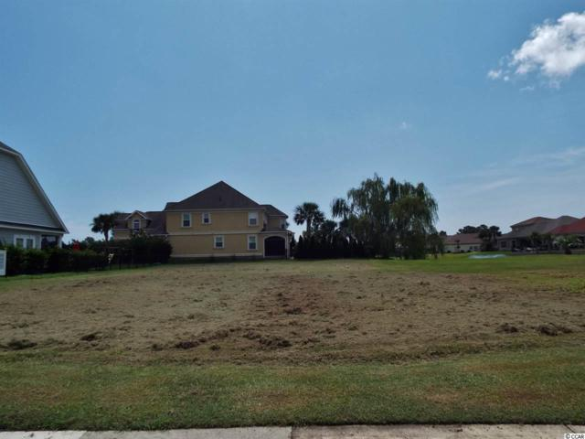 Lot 317 Turtle Cove Drive, Myrtle Beach, SC 29579 (MLS #1717758) :: Sloan Realty Group