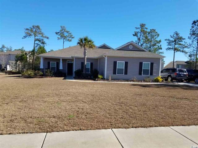 265 Marsh Tacky Loop, Myrtle Beach, SC 29588 (MLS #1717888) :: The HOMES and VALOR TEAM