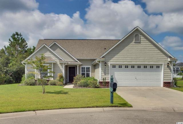 3809 Seedling Court, North Myrtle Beach, SC 29582 (MLS #1717890) :: The Litchfield Company