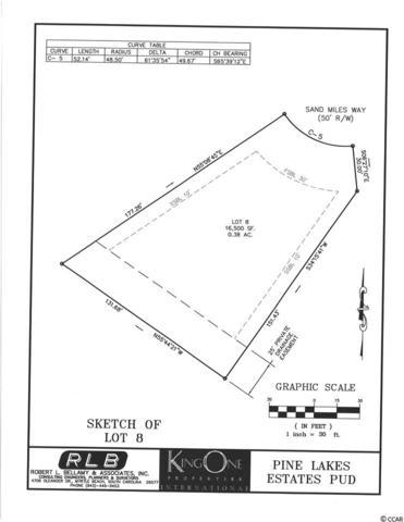 6000 Sandy Miles Way, Myrtle Beach, SC 29577 (MLS #1719048) :: The Hoffman Group