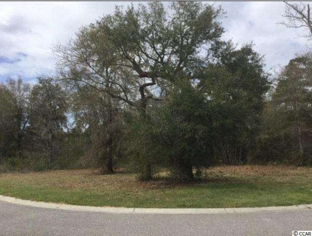32 Seagrass Ct., Pawleys Island, SC 29585 (MLS #1720885) :: The Hoffman Group
