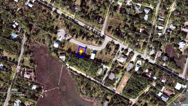57 Seagrass Ct, Pawleys Island, SC 29585 (MLS #1722002) :: The Hoffman Group