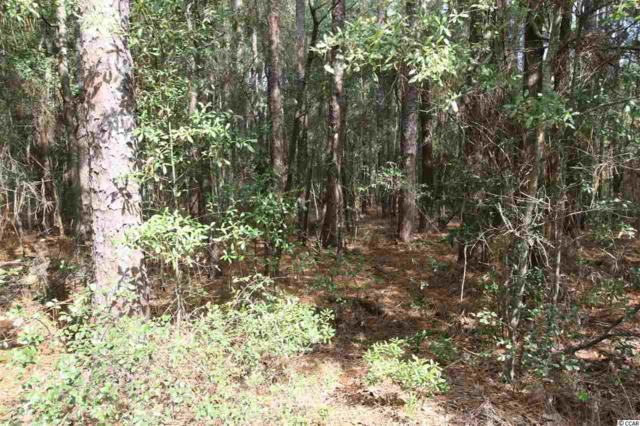 Lot 19 Arcadia Rd, Pawleys Island, SC 29585 (MLS #1722097) :: The Hoffman Group