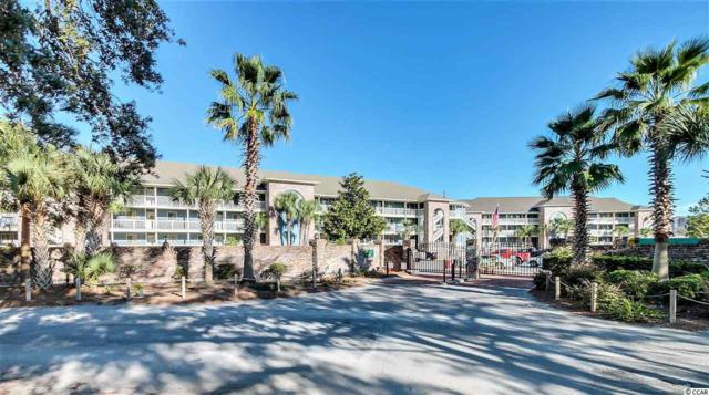 806 Conway Ave #114, North Myrtle Beach, SC 29582 (MLS #1722215) :: Myrtle Beach Rental Connections