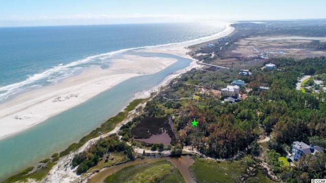3038 Vanderbuilt Blvd, Pawleys Island, SC 29585 (MLS #1722349) :: Myrtle Beach Rental Connections