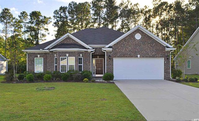 193 Ridge Point Drive, Conway, SC 29526 (MLS #1722373) :: The HOMES and VALOR TEAM