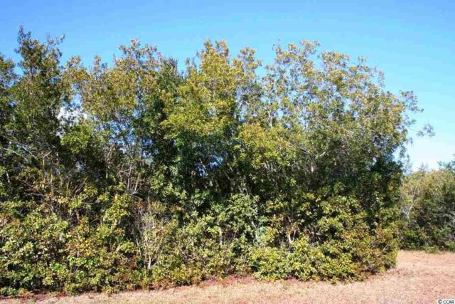 Lot 53 Permit Court, Georgetown, SC 29440 (MLS #1723451) :: James W. Smith Real Estate Co.