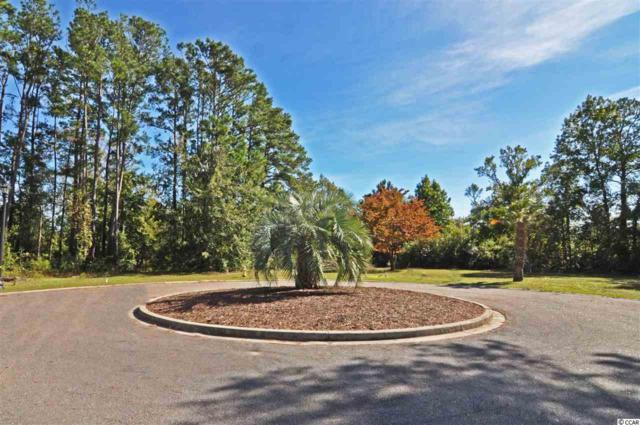 Lot 20 Lake Pointe Drive, Murrells Inlet, SC 29576 (MLS #1724053) :: The Litchfield Company