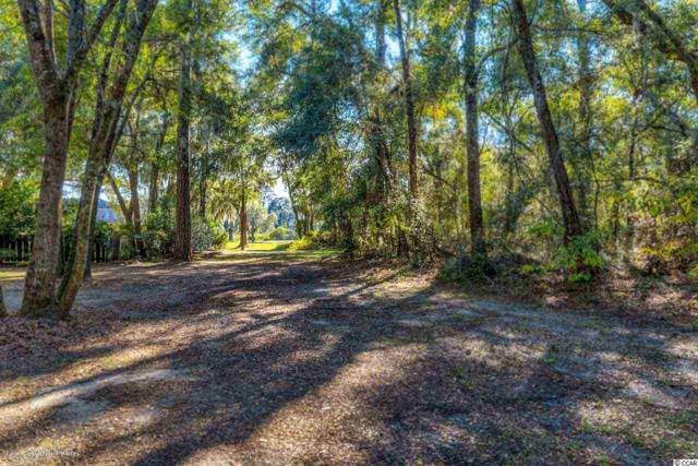 469 Congressional Drive, Pawleys Island, SC 29585 (MLS #1724374) :: James W. Smith Real Estate Co.