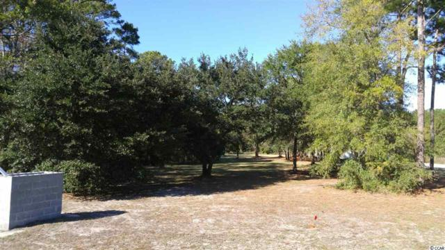 Ocean Highway, Pawleys Island, SC 29585 (MLS #1724454) :: James W. Smith Real Estate Co.