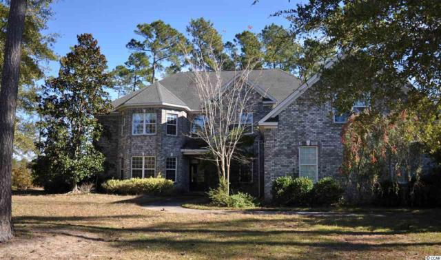 617 Nautilus Drive, Murrells Inlet, SC 29576 (MLS #1724544) :: The Litchfield Company