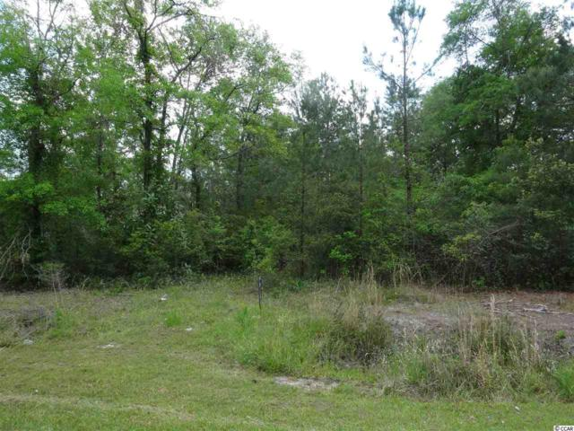 Lot 1 Pitch Landing Road, Conway, SC 29527 (MLS #1724604) :: The HOMES and VALOR TEAM